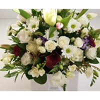 Sympathy Flowers flowers delivery - Flowers Auckland