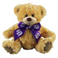 Soft Toys and Toy Gifts flowers delivery - Flowers Auckland