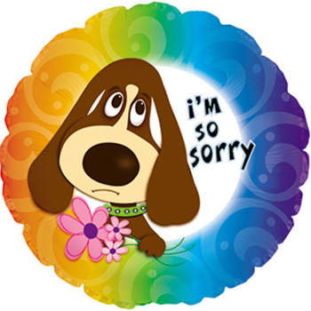 Saying Sorry made easy and fun with this Helium Balloon from Flowers Auckland flowers delivery - Flowers Auckland