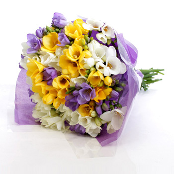 Flowers Auckland Freesia Fragrance - flowers delivery flowers delivery - Flowers Auckland