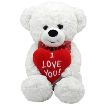 I Love You Bear is very sweet - Flowers Auckland Flower delivery flowers delivery - Flowers Auckland