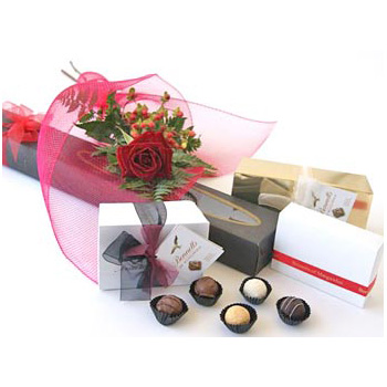 Single Rose and Chocolates delivered by Flowers Auckland at East Tamaki flowers delivery - Flowers Auckland