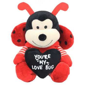 You are my Love Bug flowers delivery - Flowers Auckland