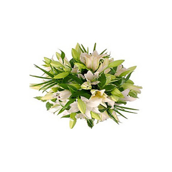 A true favourite flower for delivery Auckland NZ wide flowers delivery - Flowers Auckland