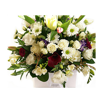 White Boxed Seasonal Flowers from Flowers Auckland flowers delivery - Flowers Auckland