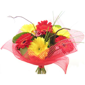 Simply Bright Gerberas delivered at Flowers Auckland flowers delivery - Flowers Auckland