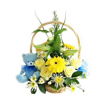 Baby Flower Basket for your New Arrival at Flowers Auckland flowers delivery - Flowers Auckland