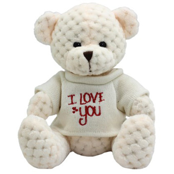 Cute Cream Bear, Flowers Delivery Auckland flowers delivery - Flowers Auckland