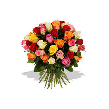 Stunning Mixed Roses for all occasions for Auckland Flower Delivery flowers delivery - Flowers Auckland