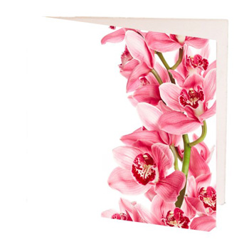 Lovely Gift Cards for flowers delivery flowers delivery - Flowers Auckland