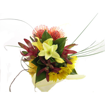 Flowers delivery - Sunny and Bold flowers delivery - Flowers Auckland