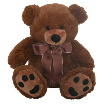 Huge Huggable Bears delivered NZ wide flowers delivery - Flowers Auckland