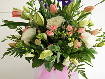 Mothers Day Flower Pot flowers delivery - Flowers Auckland