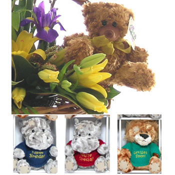 Themed Toy Flower Basket from Flowers Auckland of East Tamaki flowers delivery - Flowers Auckland