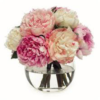 Peony Season is here and is very short...don't miss them flowers delivery - Flowers Auckland