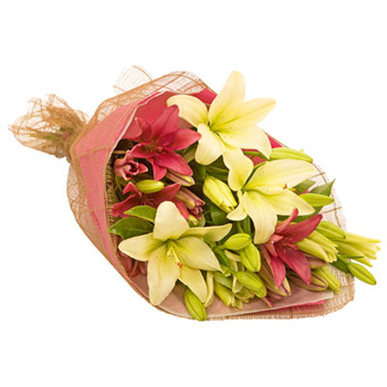 Flowers Auckland Lily Laster is a favourite flowers delivery - Flowers Auckland