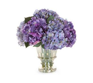 Hydrangeas, old world charm bloom - flowers delivery Auckland wide flowers delivery - Flowers Auckland