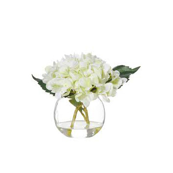 Snow white Hydrangeas are a stunning flower over summer flowers delivery - Flowers Auckland