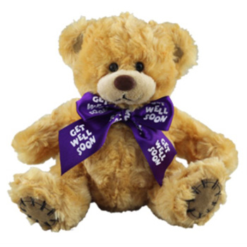 Get Well Soon Bear flowers delivery - Flowers Auckland