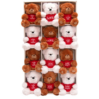 Flowers Auckland sends Romantic Soft Toys NZ wide for Valentine's Day, Feb 14 flowers delivery - Flowers Auckland