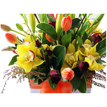 Boxed Arrangement chocca filled with beautiful seasonal flowers from Flowers Auckland flowers delivery - Flowers Auckland