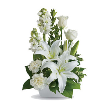 Soft sympathy flowers for delivery New Zealand wide flowers delivery - Flowers Auckland